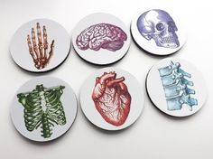 """These anatomy coasters would make a great addition to a nursing student dorm room... and I totally want them too! color round Anatomy Coasters 3.5"""" neoprene graduation medical doctor skull brain hand anatomical heart, nursing, medical, nurse, doctor, affiliate"""