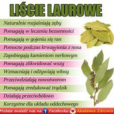 Korzyści zdrowotne liści laurowych - Zdrowe poradniki Nutrition, Good To Know, Flora, Food Porn, Herbs, Healthy Recipes, Cooking, Detox Waters, Nutella