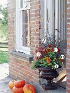Fall...must try this in my urns.