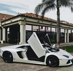 Lamborghini Luxury Cars Luxury Living