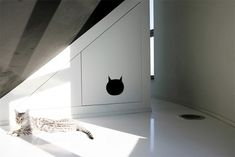 Inventief de kattenbak verbergen - Roomed | roomed.nl