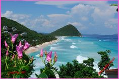 Long-Bay-Beach-Tortola | The Orange Bee