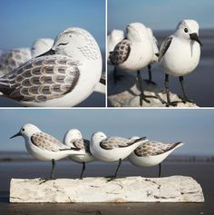 Sanderling Bird Carving - from buy the sea