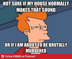 """Not sure if my house normally makes that sound or if I am about to be brutally murdered.""      Every night...every noise."