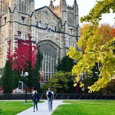 The University of Michigan is home to historical architecture. Don't just study, explore! Michigan Colleges, University Of Michigan, Go Blue, Michigan Wolverines, College Fun, Historical Architecture, Ann Arbor, Law School, Ale