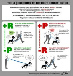 The Four Quadrants of Operant Conditioning | My ClickerExpo … | Flickr
