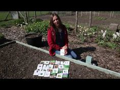 edible, annual, vegetable, polycultures, grow