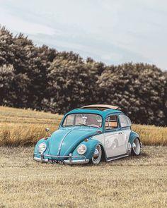 "German Is Rusty Vinyl Decal Sticker Car Van VW Volkswagen Bug Vintage 3/"""