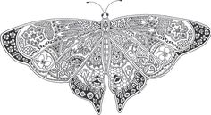 Butterfly mandala adult coloring pages #3123 Adult Coloring Pages ...