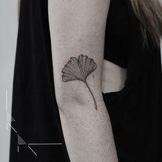 Rachael Ainsworth's tattoo - Ginkgo for Katja   #rachainsworth #tattoo #ginkgo #floraltattoo #botanicaltattoo #berlintattoo