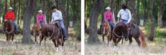 Do you know what to do on the trail when your horse just won't settle down—and even tries to bolt? These expert tips will get your horse back. Getting Him Back, Trail Riding, Horse Training, Horses, Horse Horse, Horse