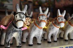 burros!!