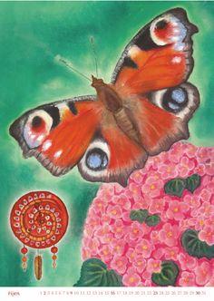 10 motýl