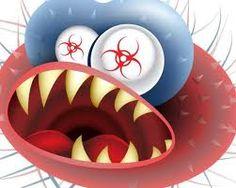 Activist's Journey To Life: Day 290: Killer Superbugs On The Loose http://activistsjourneytolife.blogspot.com/2013/02/day-290-killer-superbugs-on-loose.html