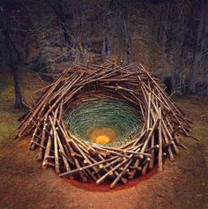"""Clemson Clay Nest"" by nils-udo, 2005"