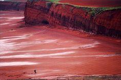 Alpaca My Bags, Low Low, Cape Breton, New Brunswick, Nova Scotia, Antelope Canyon, Google Images, Natural Beauty, Clay