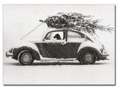 "Dog Driving in Snow Holiday Cards - Box of 10, from Dogstuff.com. A dog steers an old Volkswagen Beetle through a heavy snow, a Christmas tree tied down to the roof. Inside: ""Wishing you all the pleasures of the season."" Box of 10 cards and envelopes. Cards each measure 4.75""H x 6.5""W..."
