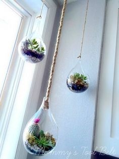 diy hanging globe and geo terrariums, diy, gardening, home decor, succulents, terrarium More