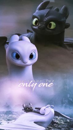 Btw she is not a night fury and she is not the last of her kind. -gabi Btw she is not a night fury and she is not the last of her kind. Httyd Dragons, Dreamworks Dragons, Cute Dragons, Httyd 3, Toothless And Stitch, Toothless Dragon, How To Train Dragon, How To Train Your, Die Letzten Ihrer Art