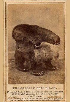grrlandog:  The Grizzly Bear Chair apparently was a gift for American president Andrew Johnson in 1865 by a hunter and frontiersman named Seth Kinman.  — he also made a fiddle out of the skull of his favorite mule and gave it to Abraham Lincoln.
