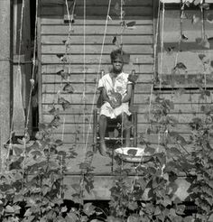 "June 1938. ""Butter bean vines across the porch. Memphis, Tennessee."" by Dorothea Lange for the FSA."