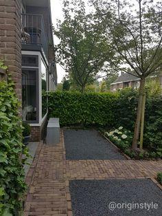 Garden Hedges, Garden Inspiration, Outdoor Living, Garden Design, Sidewalk, Home And Garden, Backyard, Landscape, Green