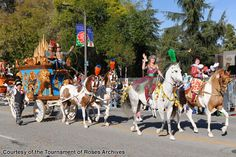 Scripps Miramar American Saddlebreds in the 2010 Rose Parade Horse Flowers, Horse Costumes, American Saddlebred, Horse Drawings, Dressage, Coachella, North America, Camel, Horses