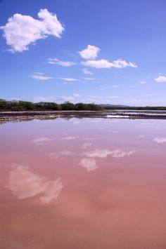 Las Salinas, Cabo Rojo, Puerto Rico by Ronald C. Flores on Flickr.  A microorganism in the evaporating ocean waters is responsible for the red color, which persists until salt crystals form and are harvested. Operations in this area started in the 1500s making it one of the oldest industries in Puerto Rico.