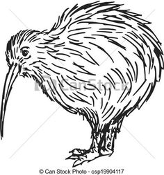 Hand drawn, sketch, cartoon illustration of kiwi. Kiwi Tattoo Designs, Bird Stencil, Bird Clipart, Kiwi Bird, Clipart Black And White, Bird Illustration, Pyrography, Animal Drawings, Patterns