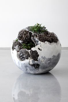 Remainder no 7 2016 by jamie north solo exhibition at sarah cottier gallery sydney jamienorth sarahcottiergallery Cement Art, Concrete Art, Concrete Planters, Concrete Crafts, Concrete Projects, Australian Plants, Australian Artists, Concrete Sculpture, Garden Sculpture