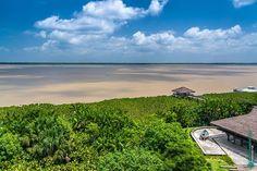 Parque Mangal das Garças rio Guamá e Baía do Guajará Belém - Pará Brasil. www.mauriciomoreno.com  #belem #pa #para #brasil #deck #river #bay #guama #guajara #nature #art #photography #landscape #mmorenofoto