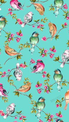 A ilustradora Bianca Pozzi é de Londrina - Watercolor background with birds and blooming twigs Frühling Wallpaper, Flower Wallpaper, Pattern Wallpaper, Wallpaper Backgrounds, Iphone Backgrounds, Textures Patterns, Print Patterns, Pattern Print, Illustrator