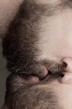 From one beard to another | ♥