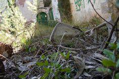 Abandoned chair in Catalunya by David Juárez Ollé