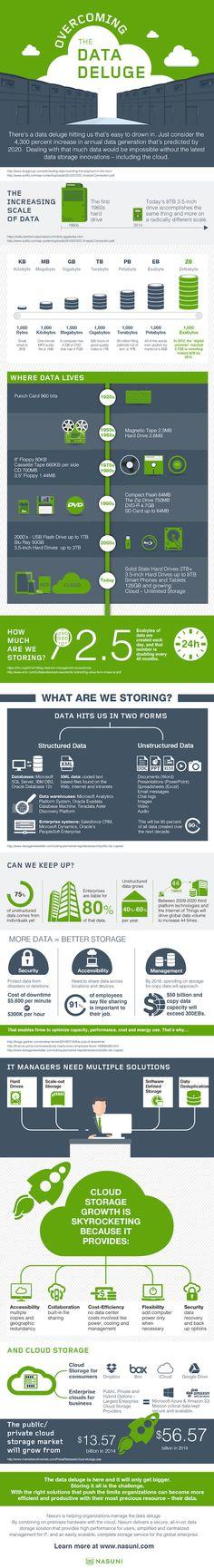 IT Social - Le Data Déluge en images (infographie)