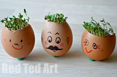 Cress Head How to