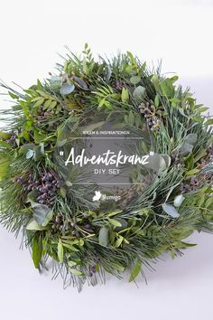Mit bunt gemischtem Grün und Beeren gebundene Kränze sind eine schöne Deko in der Weihnachtszeit.Trau Dich und greif selbst zu Draht und Schere! Mit unserem DIY-Sets erhältst Du alle Materialien, die Du für einen selbst gebundenen Adventskranz benötigst. Jetzt online bei Blumigo.de  #herbstkranz #adventskranz #weihnachten #weihnachtsdeko #diy #doityourself #kranzliebe #kranz #kranzbasteln #weihnachtsdekoration #bastelideen #bastelidee #kreativität #kreativsein #schrittfürschritt…