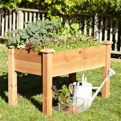 Gronomics Rustic Elevated Bed