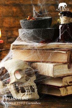 Richtig gruseln mit der ILESTO Gartenbox! 👻 Wir zeigen dir, wie du deine ILESTO Gartenbox ganz einfach in einen gruseligen Sarg verwandelst. #halloween #ilesto #gartenbox #aufbewahrungsbox #creepy #gruseln #diy #selbermachen #tippsundtricks Creepy, Meat, Halloween, Food, Casket, Tips And Tricks, Make Your Own, Simple, Essen