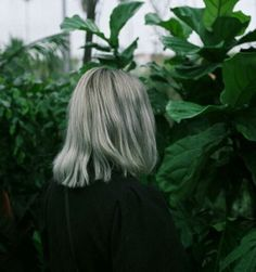 girl with light green shoulder length hair wearing a dark green shirt in a nursery full of trees