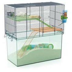 Savic Habitat Metro Gerbil or Hamster Cage Large Hamster Cages, Gerbil Cages, Hamsters, Classroom Pets, Stoke On Trent, Pet Home, Animal Decor, Animals For Kids, Backgrounds