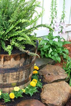 whiskey barrel I like the rock border. I may have to try that with mine.