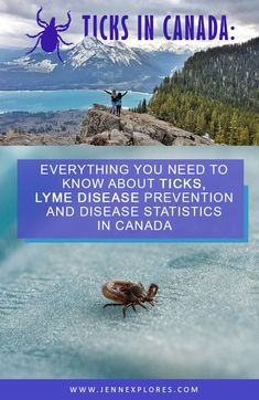 Your complete guide to staying tick-free and prevent Lyme disease - prevention, statistics, products to repel ticks and more