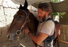 Image result for iraq war horses
