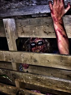 Mayfields haunted trail in Athens Tn. Haunt Scary Trail Me