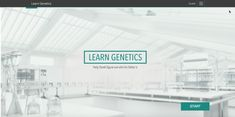 learn-genetics1 Genetics, Background Images, Superstar, Templates, Learning, Picture Backdrops, Stencils, Wallpaper Backgrounds, Studying