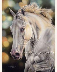 [FINISHED]😊  Lusitano in Pastells 🎨🐴😍💖  #horseart #horselove #horsedrawing #pferdeschoenheiten #equineart #lusitano #whitehorse #blueeyes #pasteldrawing #pastellove #animalart #animaldrawing #petdrawing #petportrait #animalcreatives #youngartist #young_artists_help #art_4share #artscloud #artist_4_feature #artistic_unity_ #pencildrawings #arts_gallery #realistic_artworks #realisticdrawing #realistic_arts #draweveryday #loveart #dailyarts #creative_animalart