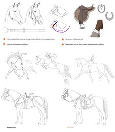Horses + riders as 11th pledge is available through my patreon: www.patreon.com/precia for those who pledge before 30th May The full pledge will contain - 30 horses poses - tacks desig...
