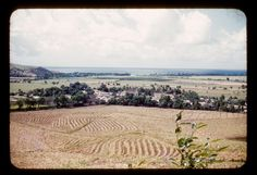 Plowed field, houses, grassland, bay | Maunabo (see comment).  1950s   John Driver photo