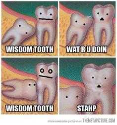 Wisdom Tooth :(